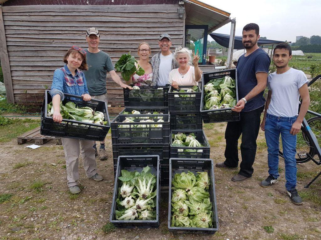 Vrijwilligers met de oogst van de dag