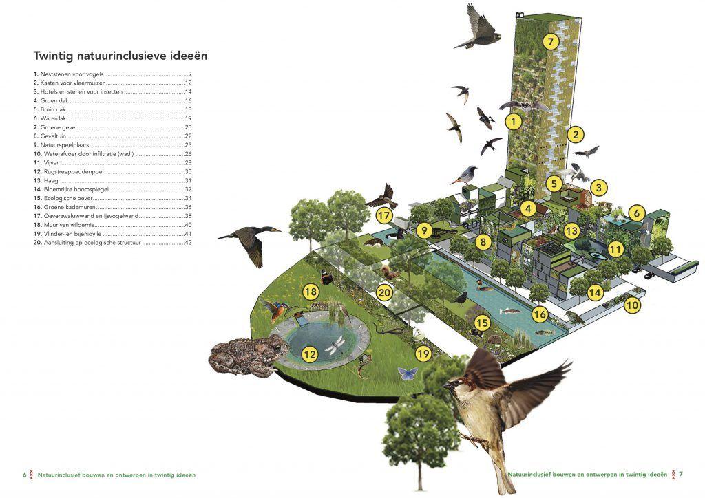 Natuurinclusief bouwen en ontwerpen