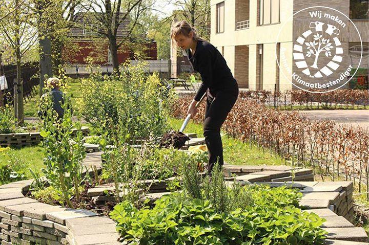 Ellen Karis is één van de buurtbewoners die de tuin onderhoudt