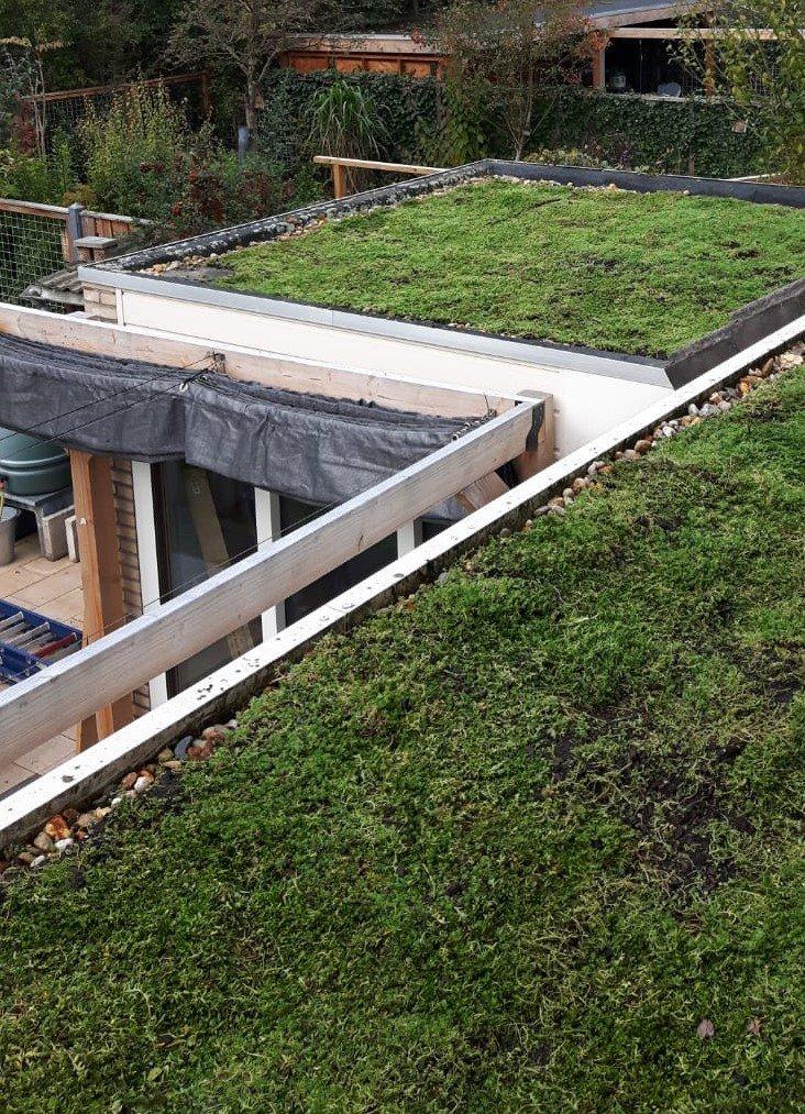 Groene daken de Laar-Oost