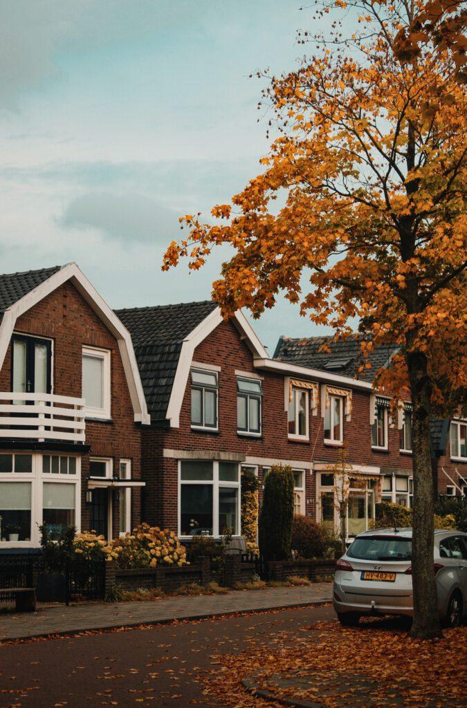 Bomen in de straat werken verkoelend en verhogen de waarde van je woning