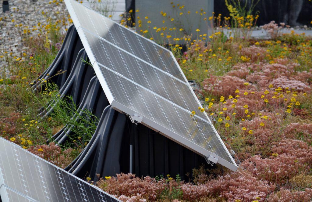 Zonnepanelen op een groen dak hebben een betere opbrengst