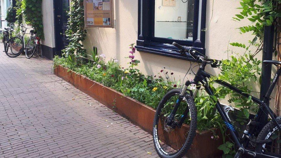 Geveltuin Bentinckstraat