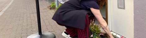 Geveltuin-actie Klarendal © Willem Hofstede
