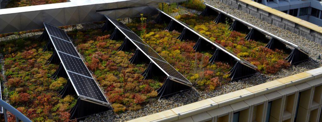 Zonnepanelen op een groen dak hebben een hoger rendement
