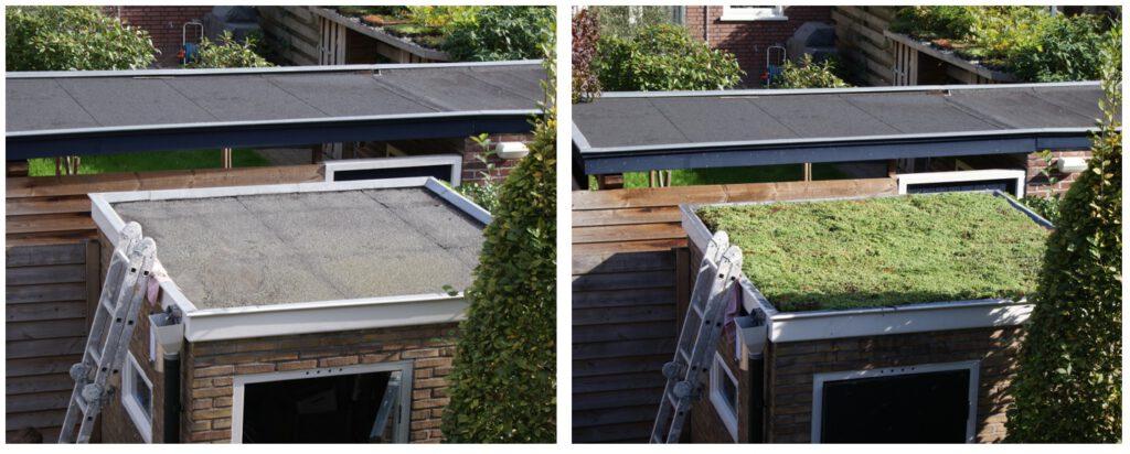 Groen dak voor en na