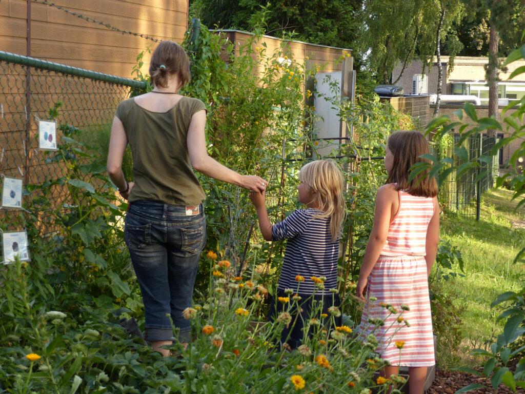 Groente Gilde is een gezamenlijke buurttuin in de Geitenkamp