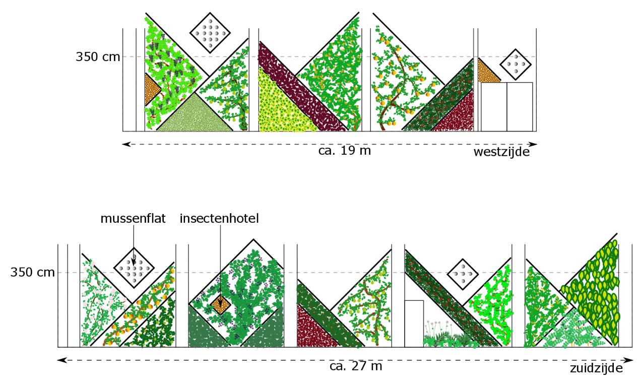 Het ontwerp is speels en er zijn veel verschillende soorten planten gekozen