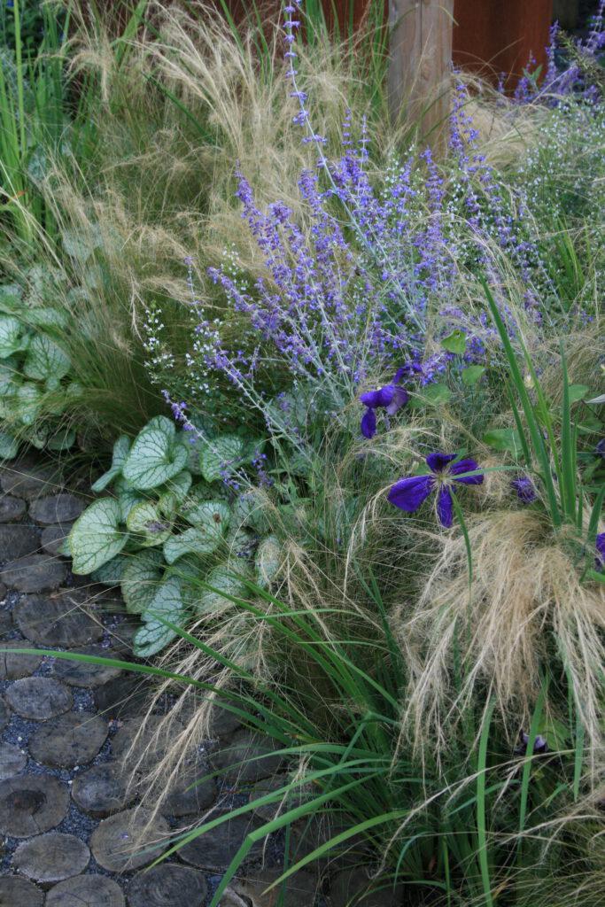 Variatie in beplanting zorgt voor veel wateropname en verkoeling
