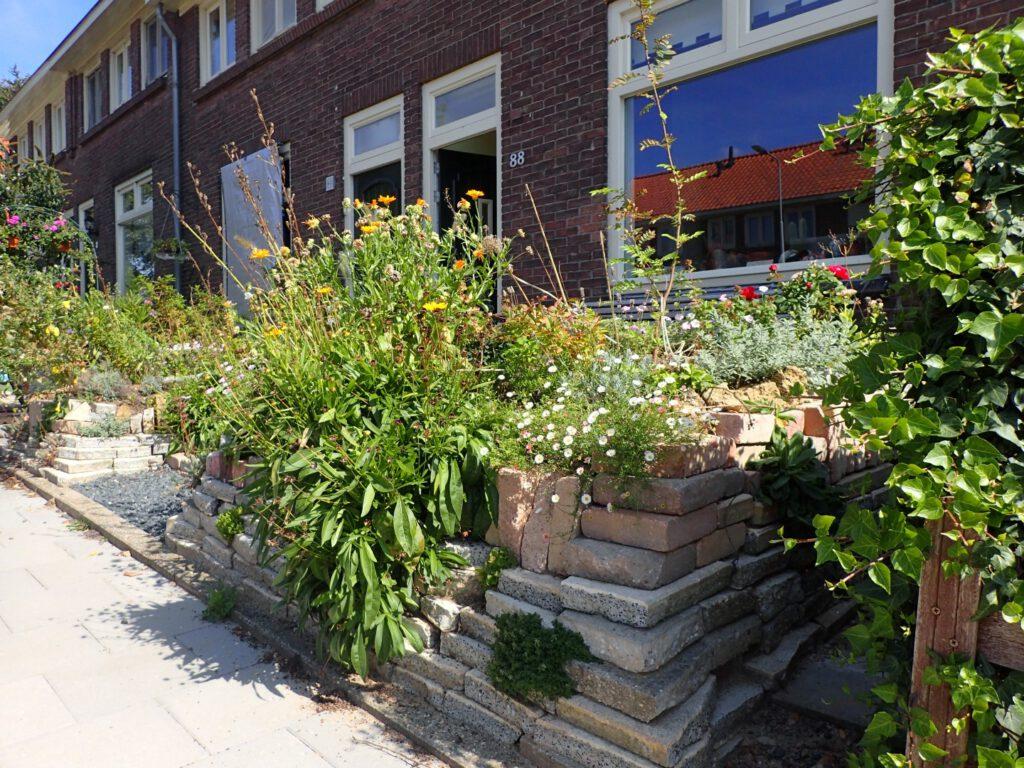 De tuin in de Sperwerstraat is een groene oase geworden