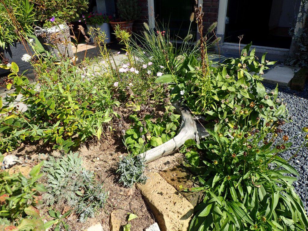 Er zijn zo veel mogelijk tegels uit de tuin gehaald