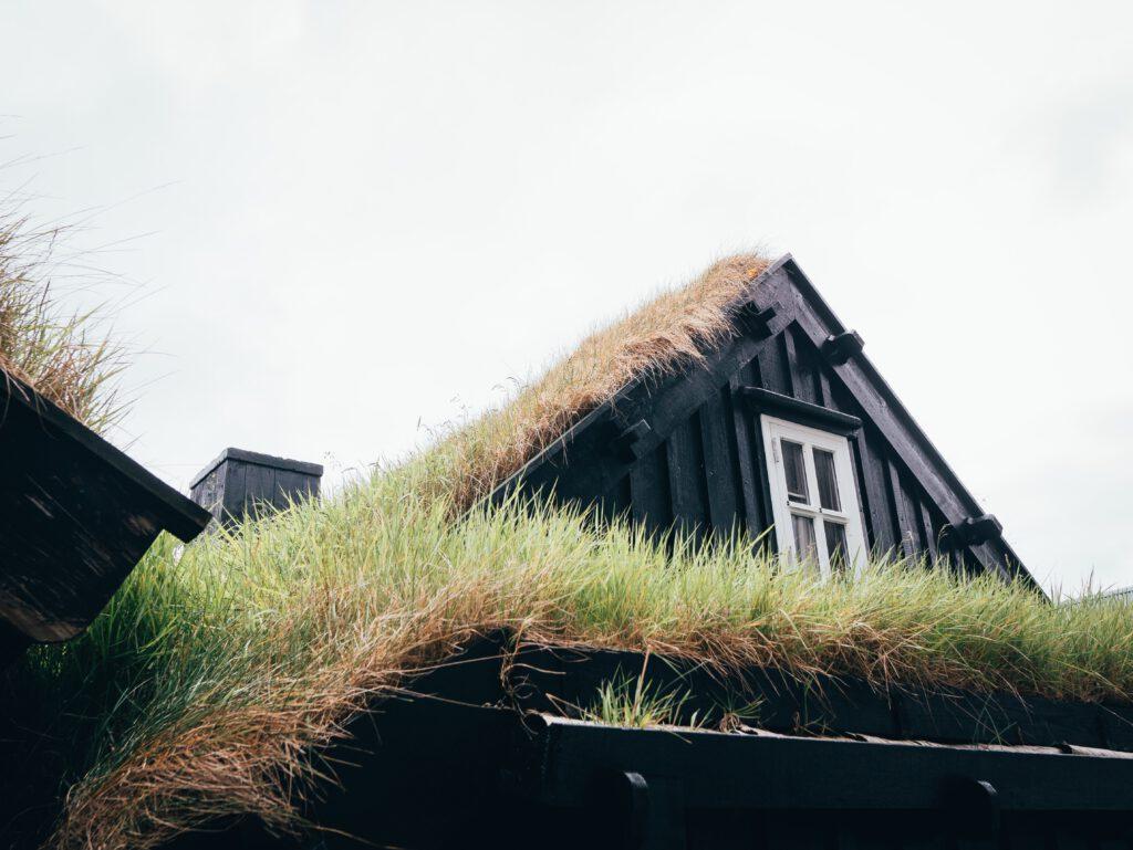 Groene daken hebben een isolerende werking, nemen regenwater op en trekken allerlei insecten aan