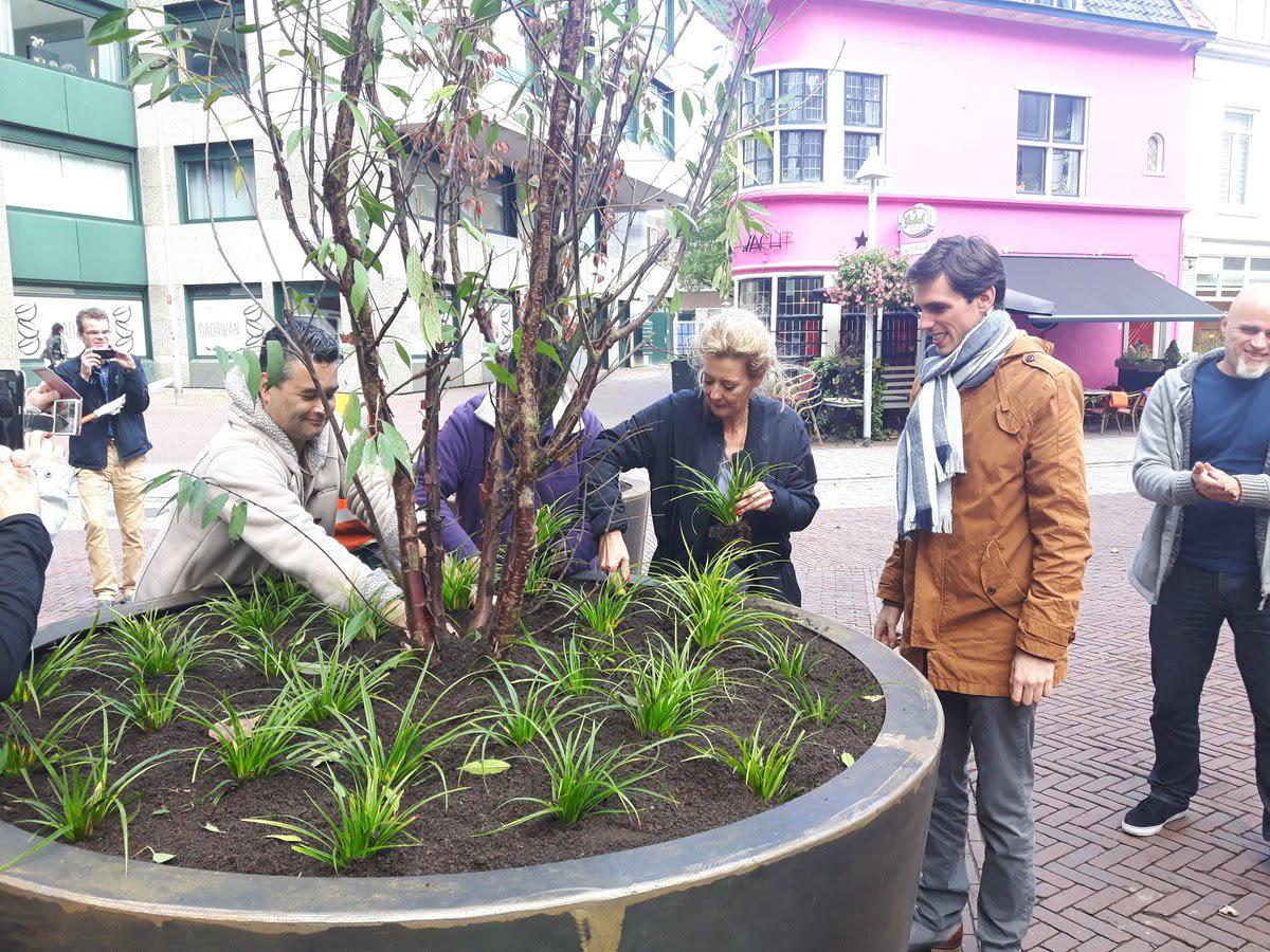 Er zijn grote plantenbakken geplaatst. De wethouder was bij de opening.