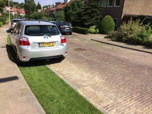 Auto's kunnen gemakkelijk parkeren op het gras, terwijl het regenwater gemakkelijker de grond in zakt